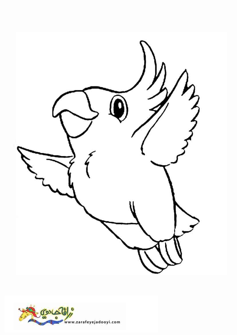 زرافه جادویی - رنگ آمیزی پرنده طوطی