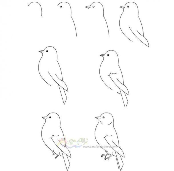 زرافه جادویی-نقاشی ساده پرنده