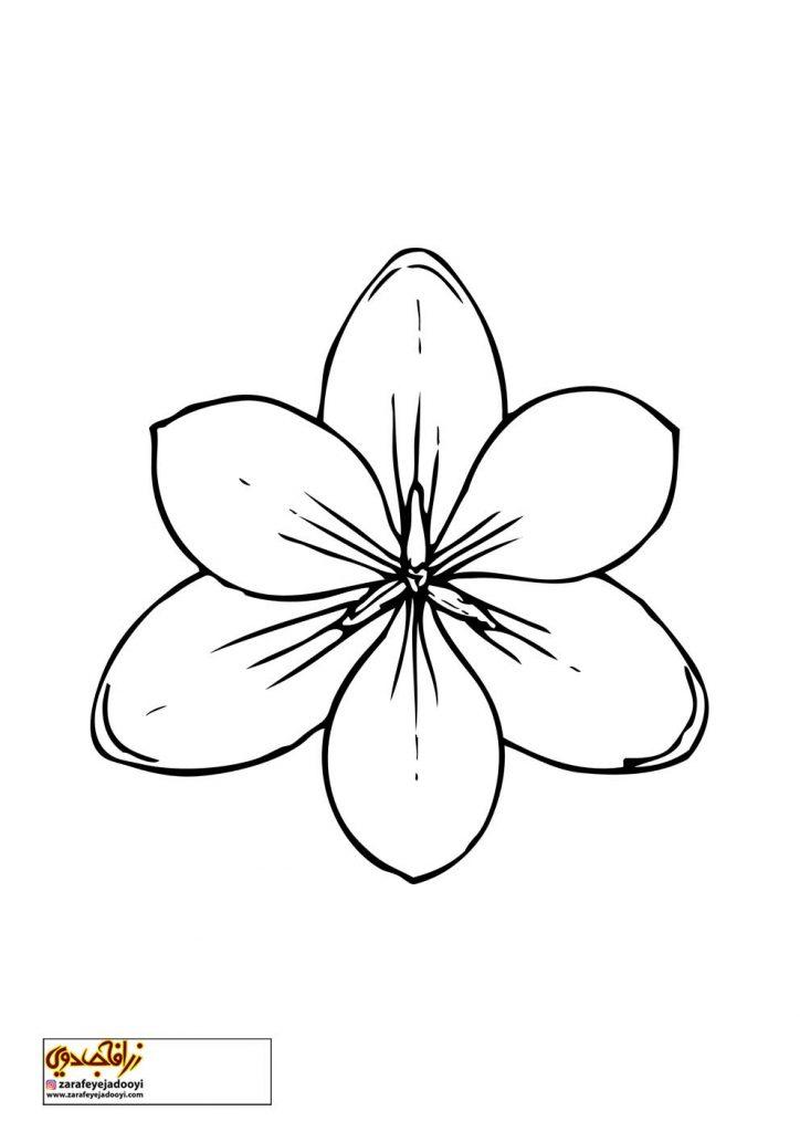 طرح رنگ آمیزی و نقاشی گل برای کودکان 11