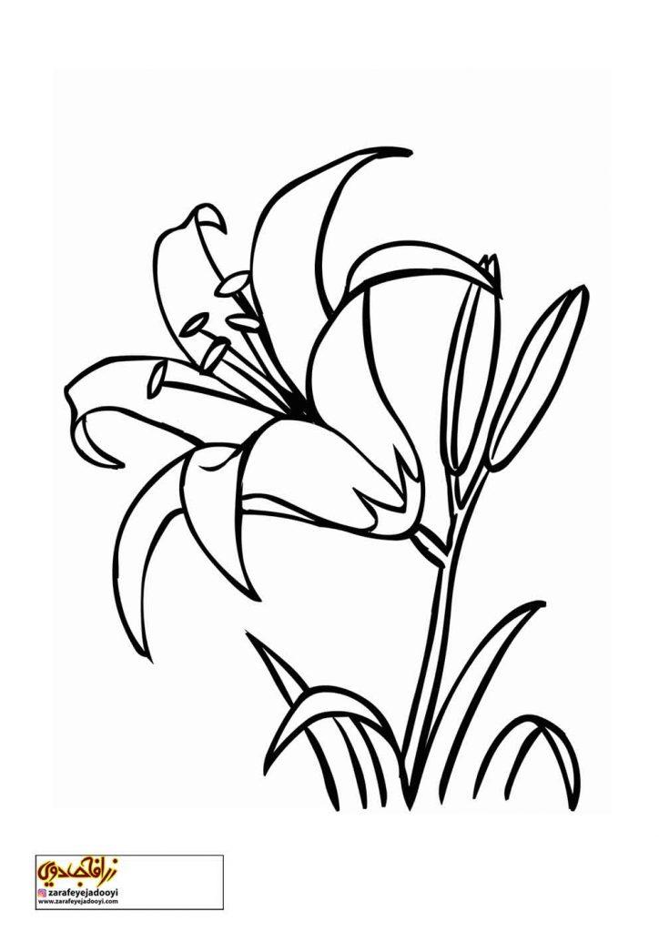 طرح رنگ آمیزی و نقاشی گل برای کودکان 14