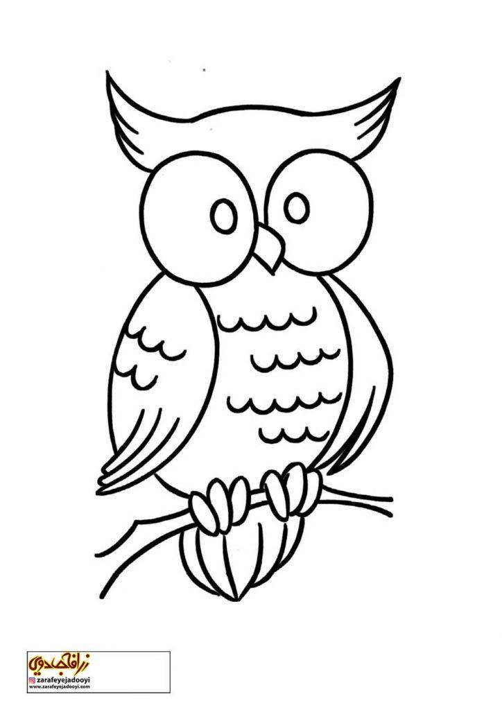 نقاشی ساده پرنده جغد برای رنگ آمیزی کودکان