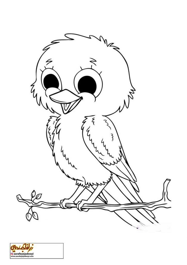 نقاشی ساده پرنده برای رنگ آمیزی کودکان
