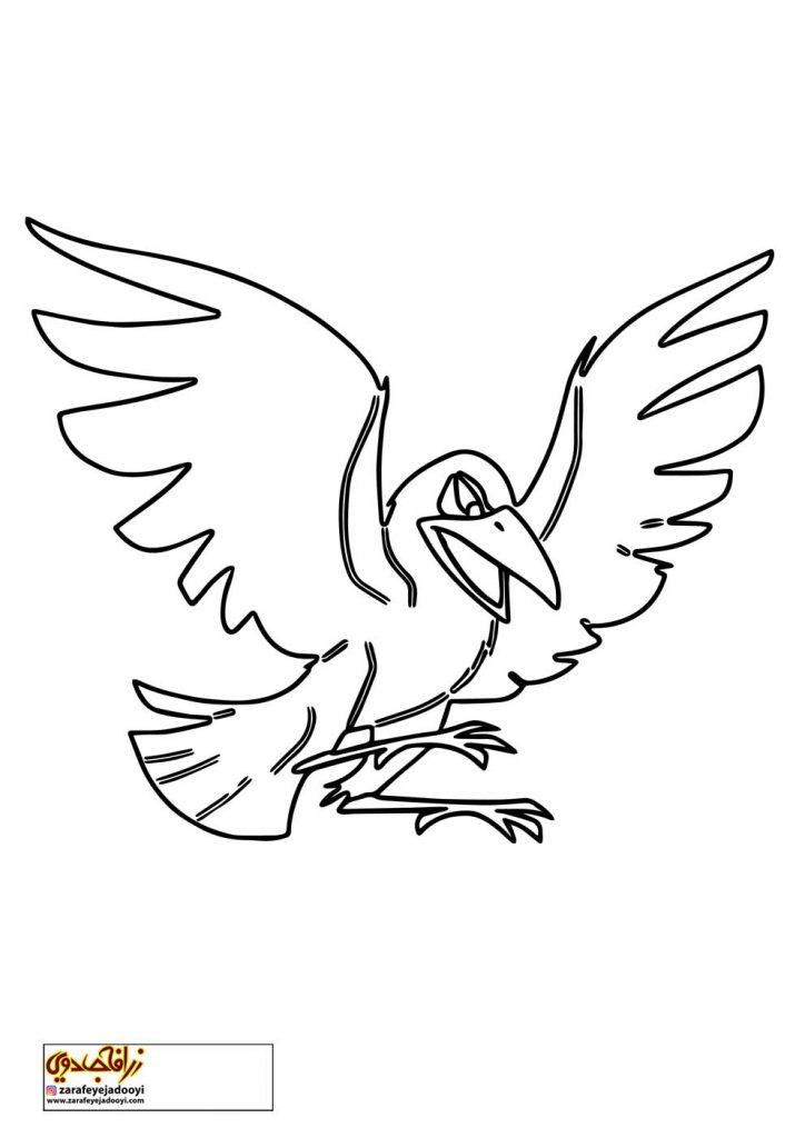 نقاشی ساده پرنده کلاغ برای رنگ آمیزی کودکان