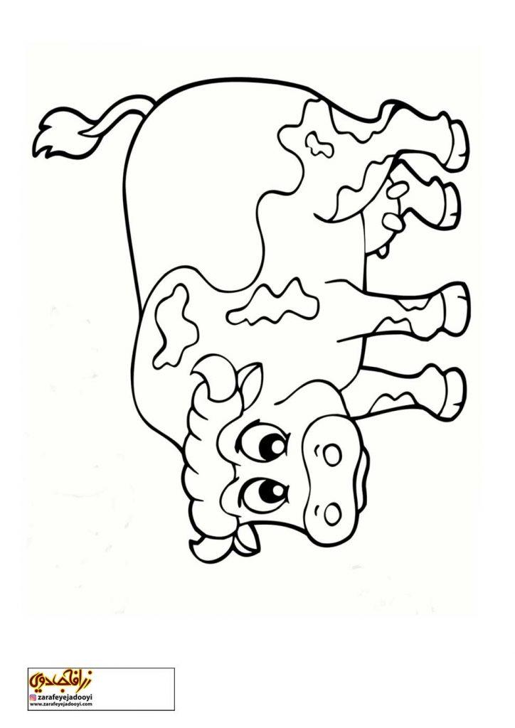 نقاشی ساده گاو برای رنگ آمیزی کودکان