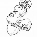 زرافه-جادویی-رنگ-آمیزی-میوه-توت-فرنگی-2