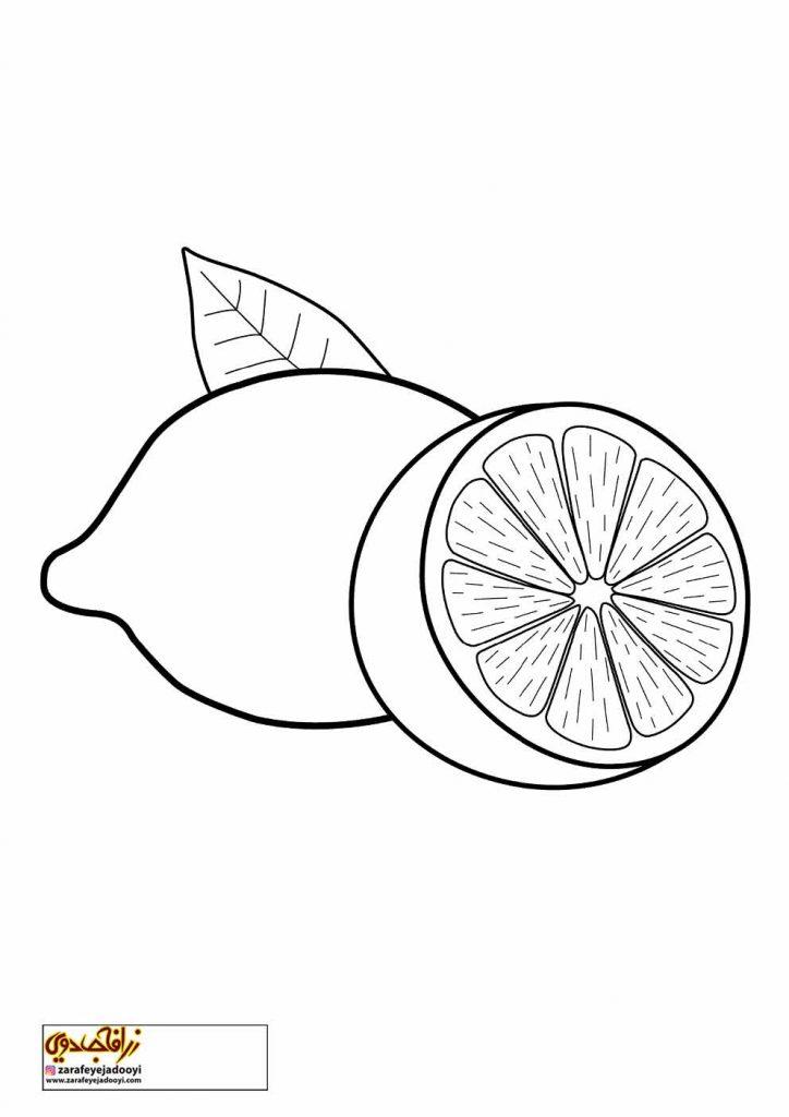 نقاشی میوه لیمو برای رنگ آمیزی