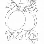 زرافه-جادویی-رنگ-آمیزی-میوه-هلو-1