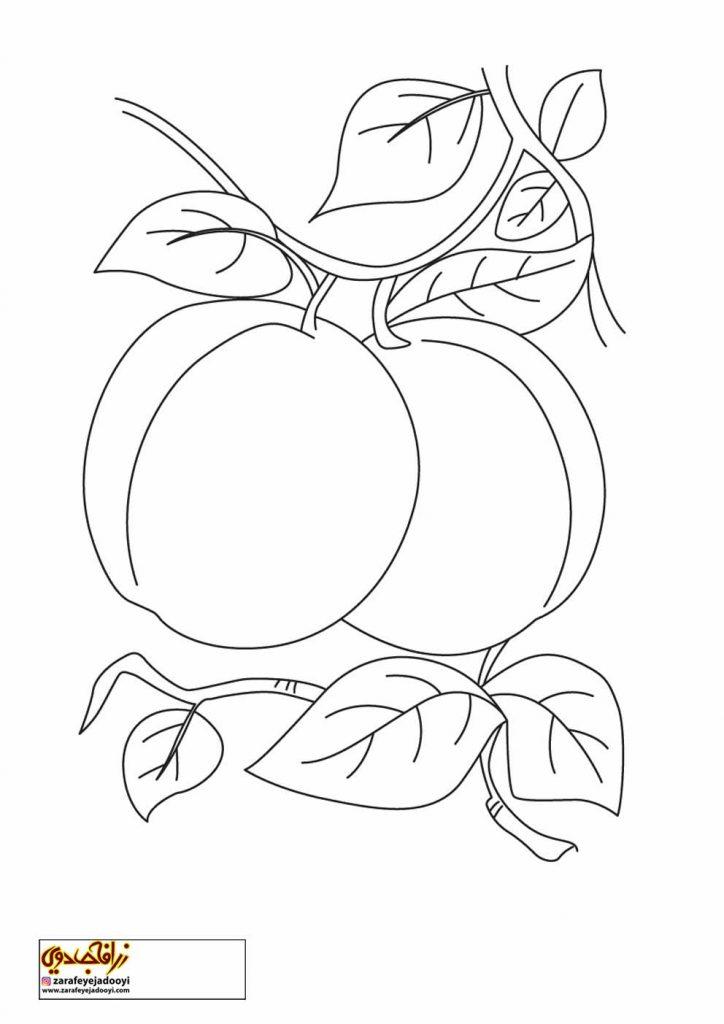 نقاشی میوه هلو برای کودکان 1