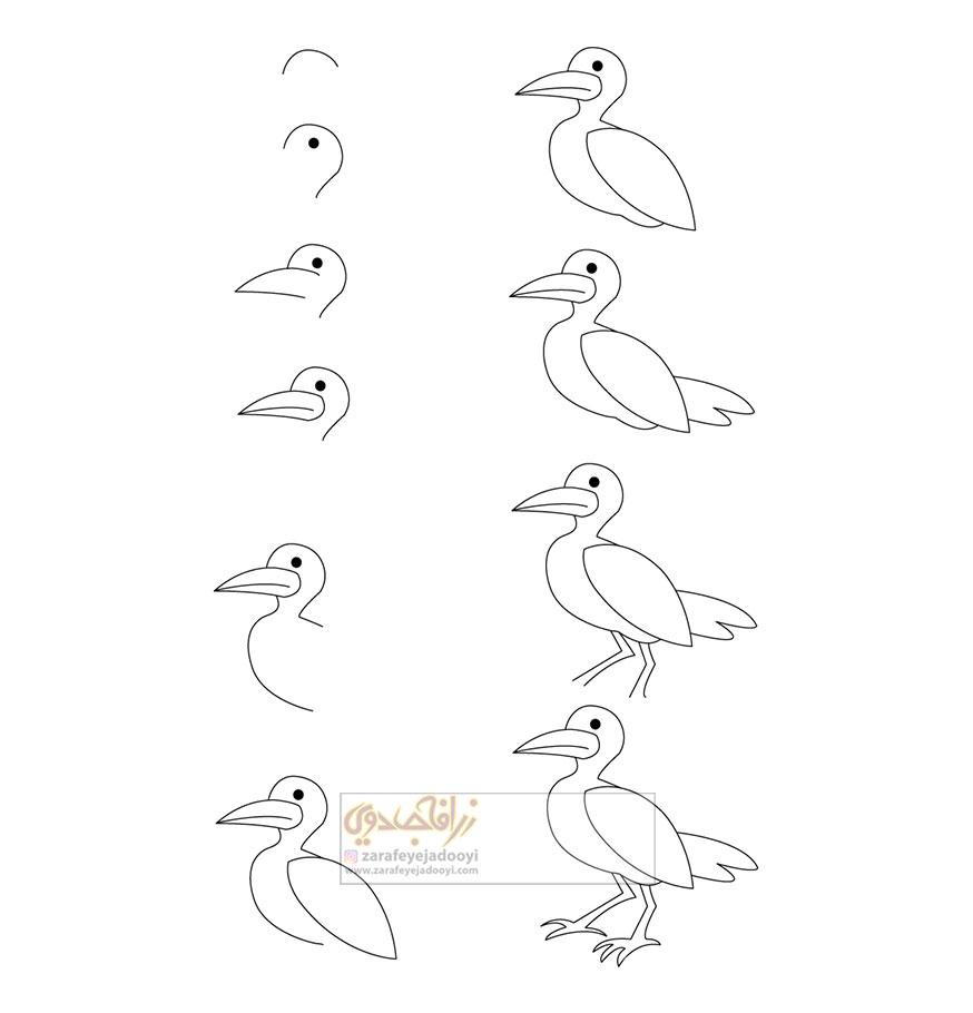 آموزش قدم به قدم نقاشی ساده مرغ دریایی