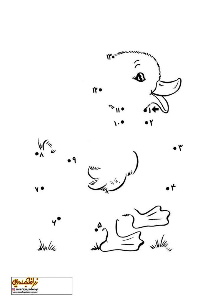 نقاشی نقطه به نقطه جوجه اردک