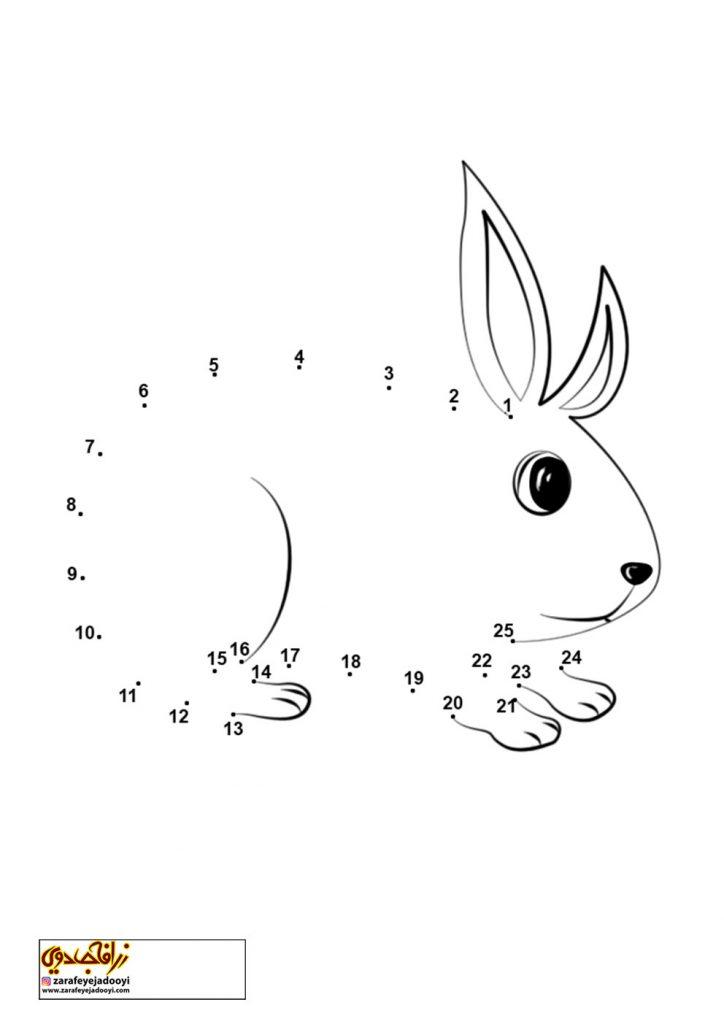 نقاشی نقطه به نقطه خرگوش 4
