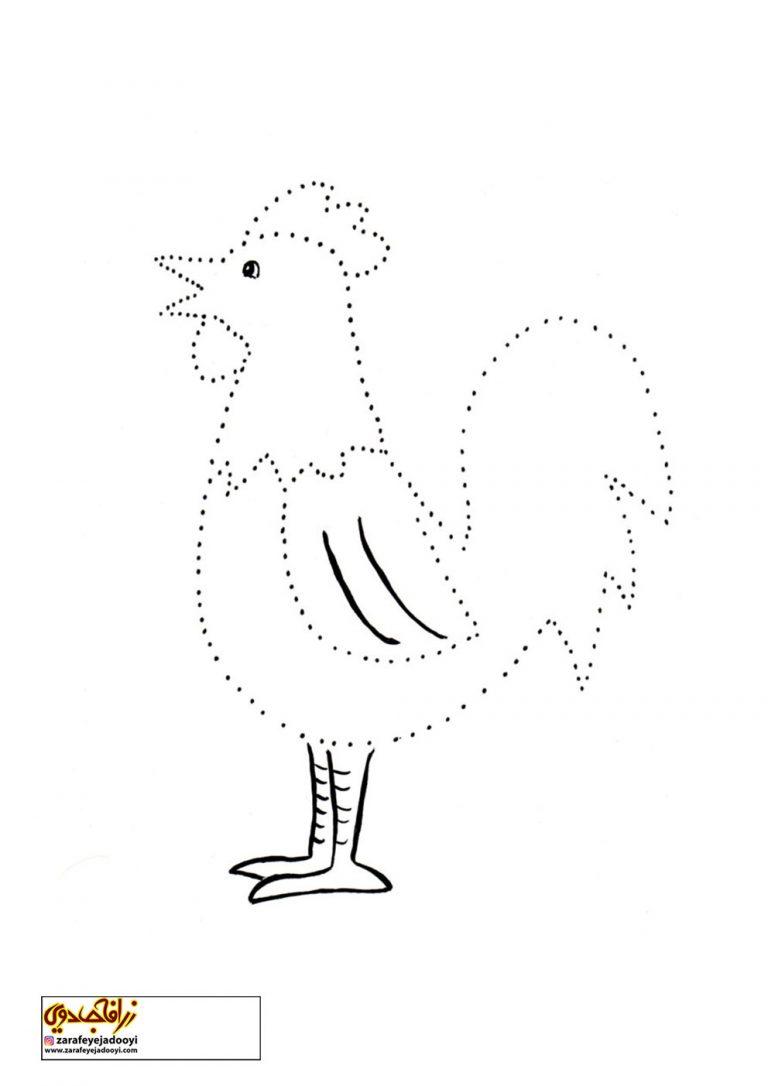 نقاشی کودکانه مرغ و خروس و جوجه